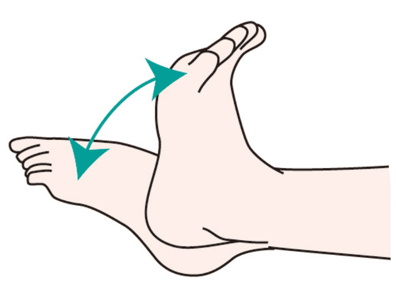 ankle_stretch