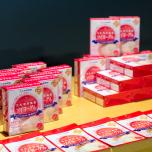 太田胃散 豆乳専用種菌ソイヨーグル
