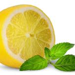 レモン ペパーミント