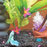 アニマルヨガ アップドッグ 熱帯魚