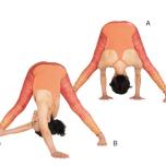 プラサリタパードッターナーサナ 立って両脚を伸ばすポーズ+バリエーション