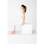 坐骨の上に座り体幹を立てる