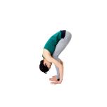 膝を軽く折り曲げて、脚の付け根から深く前屈して太腿と胸をぴったりくっつける。手のひらはできるだけ床につける。