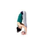 大腿四頭筋を引き上げる意識を持ちながらお尻を上げ、膝裏をゆっくり伸ばす。10呼吸キープ。膝裏を上下に開くイメージで。