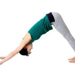 四つん這いの姿勢からお尻を上げてダウンドッグに。坐骨を天井方向へ引き上げる。