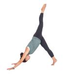ダウンドッグから吸う息で左脚を上げ、吐く息で胸に近づける。10回繰り返し、反対側も。