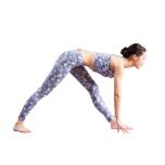 脚を前へ曲げる動きを促す筋肉は、ハムストリングOK!と臀筋。これらが柔軟になると、パールシュヴォッターナーサナなどのポーズの下半身が安定します。