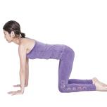 四つん這いの姿勢に戻る。肩の真下に手、腰の真下に膝がくるように姿勢を整える。