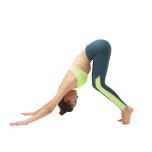 お腹が前腿にくっつくぐらい、腰が反りぎみ。膝も曲がってしまう。