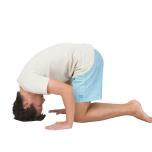 [体に働きかけ心を整えるヨガキネシセラピー]シャシャンカーサナで三角筋を伸ばす