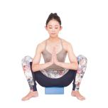合掌して肘を押す動きで、脇の下に力が入るところが前鋸筋。尻もちをついてしまう場合はお尻の下にブロックを。
