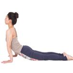 床を強く押して上体を上げるエクササイズで前鋸筋を刺激。筋力を高め、お腹を引き込みやすくすることで腰まわりが伸びるように。