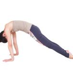 手で床を押して肩甲骨を左右に開き、お腹を引き込んで5秒キープ。