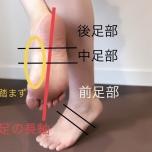 足の長軸 グラウンディング