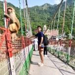橋の上でお猿さんと