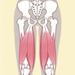 ハムストリング 筋力不足を防ごう|下半身6筋群の筋力をチェックする方法【理学療法士監修】