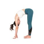 大臀筋・ハムストリングを鍛えるメソッド|脚を後ろへ伸ばすポーズが上達