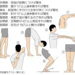 関節弛緩性テスト 肩甲骨 肩 股関節