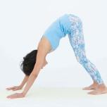 前屈が上達する「ヨガポーズの入り方」|背骨の使い方を学ぼう