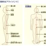 「タダーサナ」がすべてのアーサナの基本!理学療法士が重視する理想的な「姿勢」とは?
