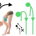 ピラティスの基本原則をヨガに取り入れよう!理学療法士が解説「背骨」の2つの原則