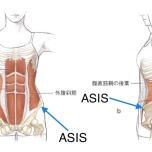 「ヨガで腰が痛くなる…」理学療法士が解決、骨盤のニュートラルを知ろう