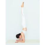 体幹が使えない人へ|自然と体幹が使える「バンダ」を意識するトレーニング