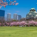 大阪城でのSAKURA YOGA