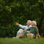 アルツハイマーを防ぐ?瞑想と脳と体の関係