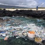 Sustainable Coastline Hawaii