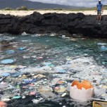美しいビーチは家から始まる|Sustainable Coastlines Hawaiiの取り組み