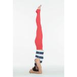 体幹強化で「逆立ち」できる体に変える!シールシャーサナ攻略のコツ3つ