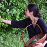 獣医師から薬草ハーバリストへ|加藤美帆さんの転身ストーリー