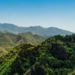 パワースポット御岳山でプチヨガリトリート。森林浴ヨガ&天空マインドフルネスを堪能しよう【7月開催】