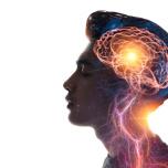 脳 運動イメージ