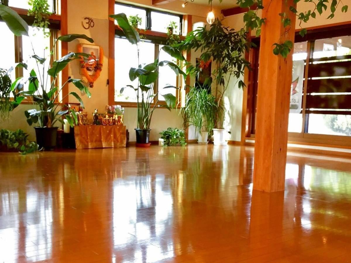 スタジオ内は日当たりが良く、緑がいっぱいです。床暖房完備しておりますので、冬もぽかぽかあったかです。